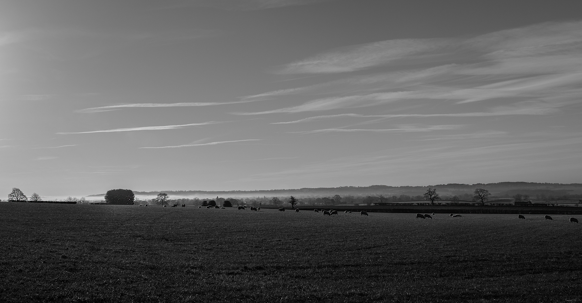 Alveley in black and white.