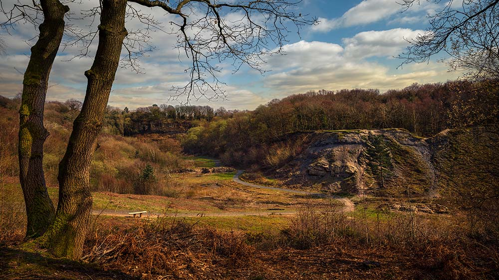 Doulton's Clay Pit Saltwells Local Nature Reserve.